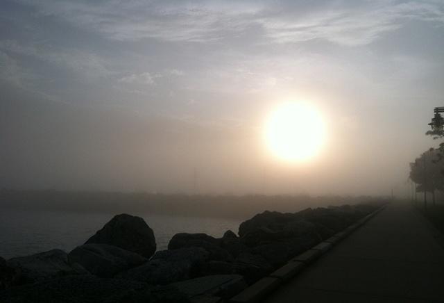 Foggy lakeside running.